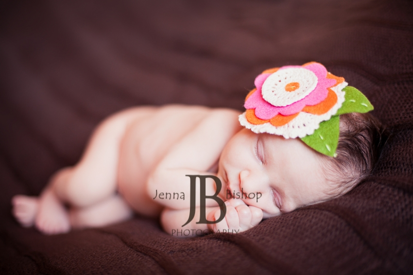 Ella Newborn Photos - Gilbert Newborn Photographer