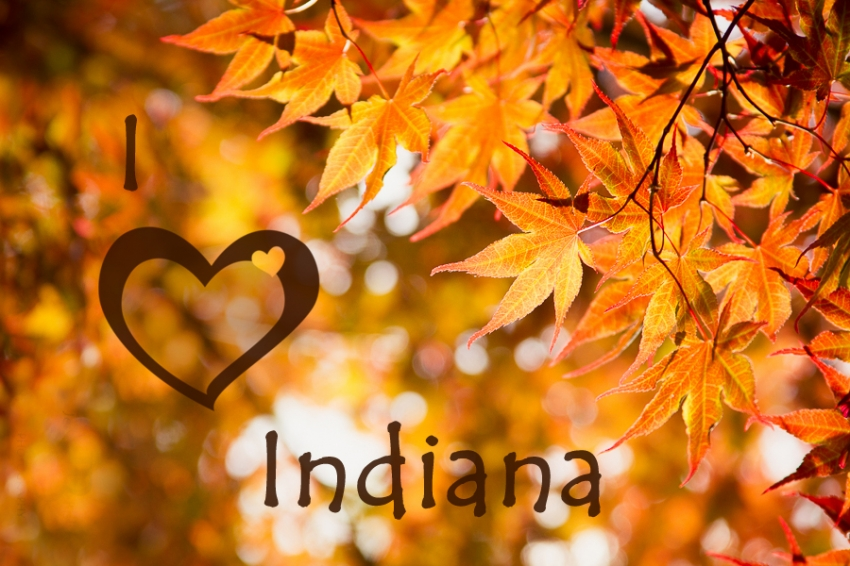 I Heart Indiana - Indiana Photo Shoots