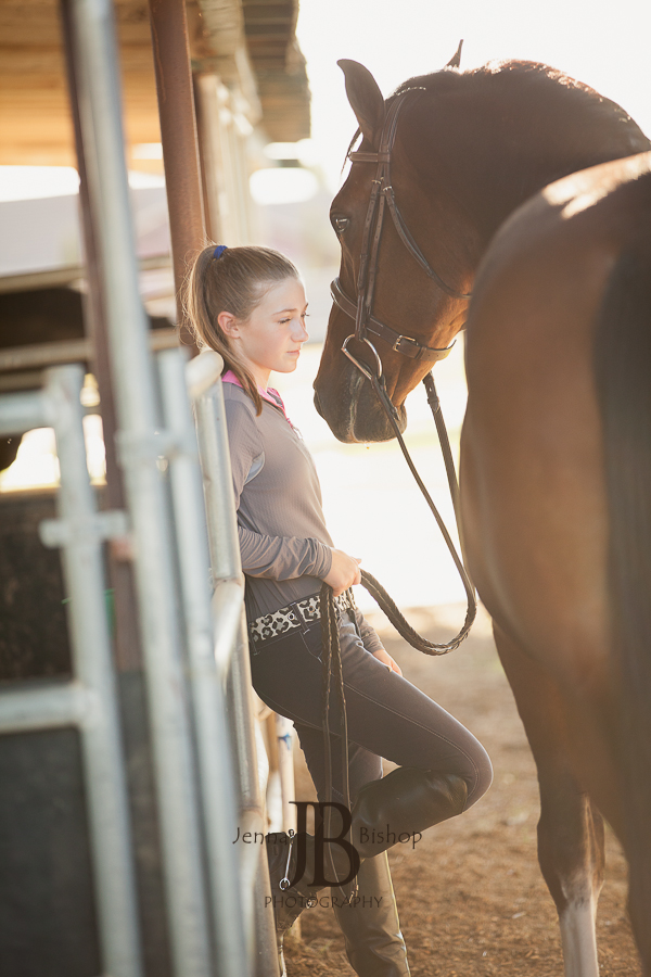 Horse Photographers in Gilbert AZ