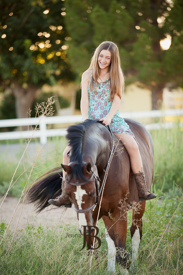 horse photographers in gilbert