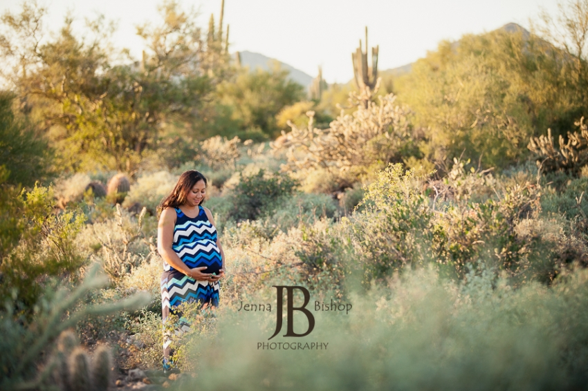 mesa desert maternity photographer