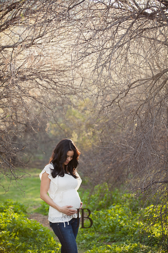 maternity photographers in gilbert