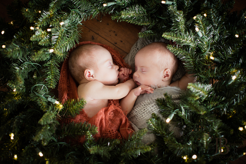 twin christmas newborn photographers gilbert az