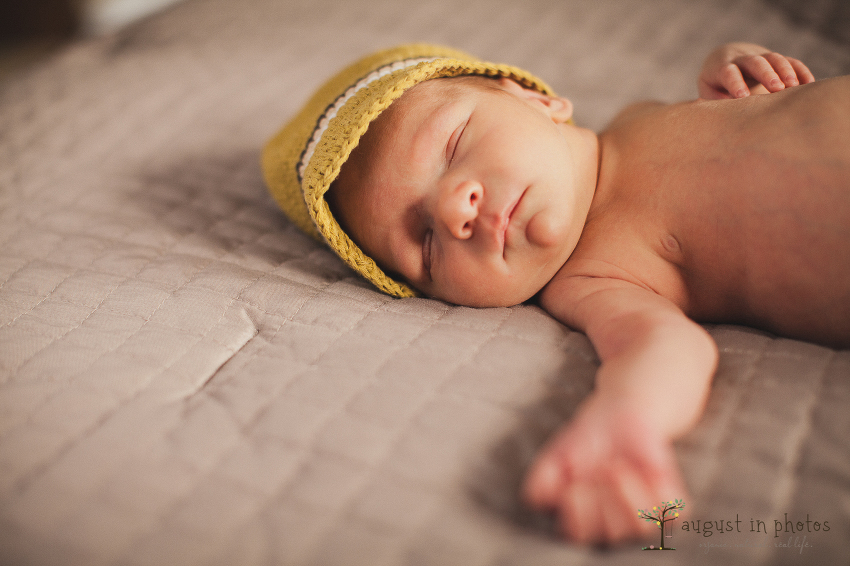 natural newborn photos
